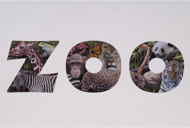 zoo letters